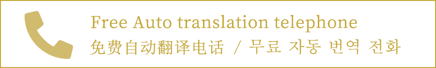 free auto translation telephone