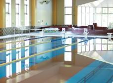 全長25mの広々温水プール